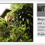 บ้านผกากรอง : ตูกะสู คอทเทจ ที่พัก อ.อุ้มผาง จ.ตาก